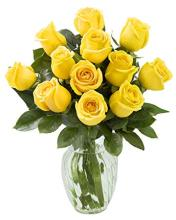 Rose Elegance 12 Premium Long Stem Yellow Roses