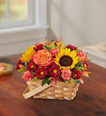 Fall Fields Basket