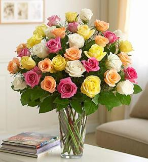 3 Dozen Premium Long Stem Assorted Roses