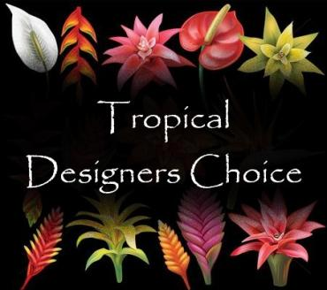 Tropical Arrangement Designers Choice