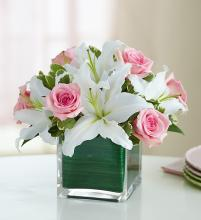 Modern Embrace™ Pink Rose & Lily Cube