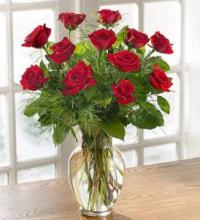 Rose Elegance Premium Long Stem One Dozen Red Roses