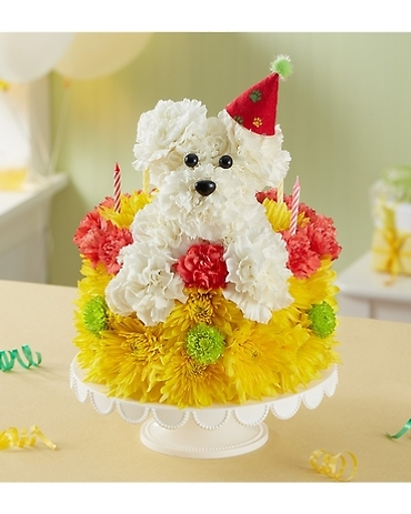 Poppin Pup Cake