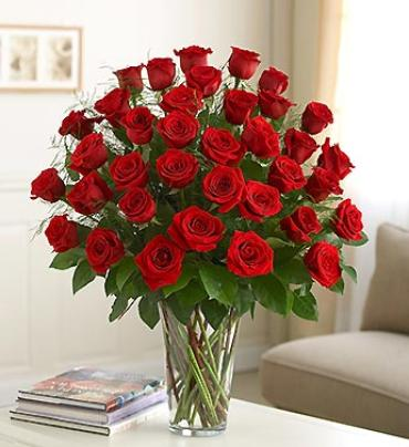 3 Dozen Premium Long Stem Red Roses