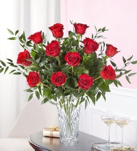 Marquis by Waterford Premium Long Stem Roses