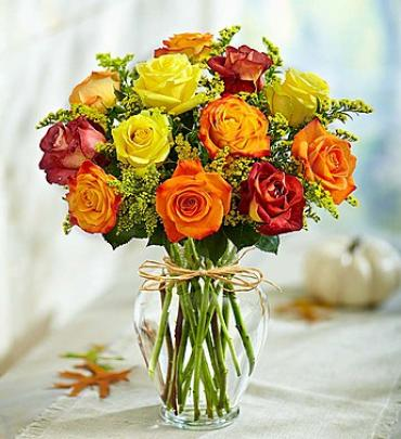 Shades of Autumn Roses